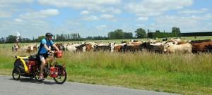 Trekové kolo na výlety s turistickými nosiči na brašny